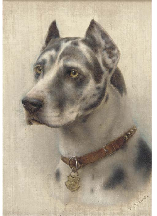 Click to see full size: Harlequine Great Dane- Wilhelm Schwar (1860-1943)