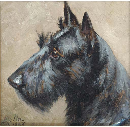 Click to see full size: Scottish Terrier- R. Delin