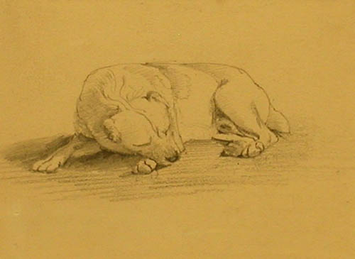 Click to see full size: ull Terrier by Sir Edwin Henry Landseer RA (1803 - 1873)