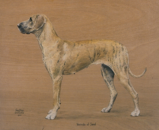 Click to see full size: Oil on panel of the Great Dane