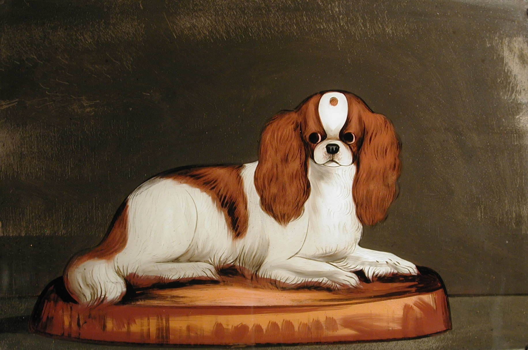 Click to see full size: King Charles Cavalier Spaniel