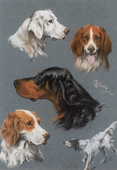 Click to see full size: Sporting Dogs- Signed 'T.Blinks'<br />