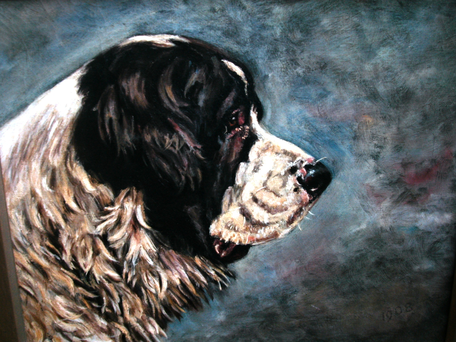 Click to see full size: St. Bernard