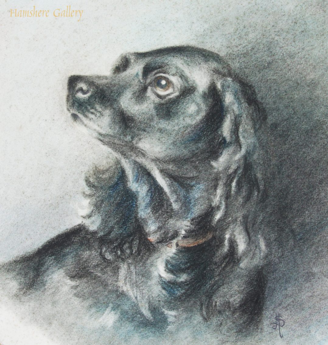 Click to see full size:  19th century charcoal and pastel on paper of a Cocker spaniel, in the manner of Sir Edwin Landseer RA (English, 1802 - 1873).