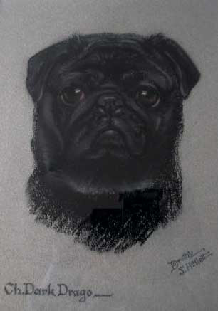 Click to see full size:  ?Champion Dark Drogo?- Dorothy S Hallett, English, fl, 1913 ? 1934, pastel on paper, ?Black Pug/, ?Champion Dark Drogo?, circa 1920.