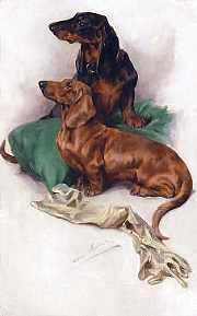 Click to see full size: Dachshunds by Arthur Wardle