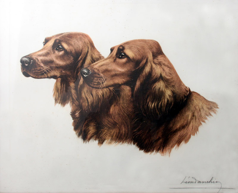 Click to see full size: Irish Setters by Leon Danchin