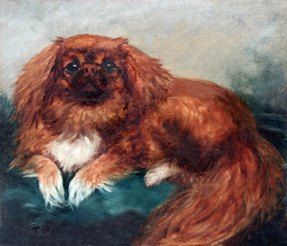 Click to see full size: Pekingese by Mrs E. Marion Nelson