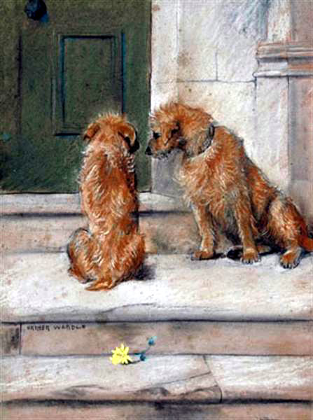 Click to see full size: Pastel on paper Irish Terriers by Arthur Wardle RI RBC PS (1864-1949)