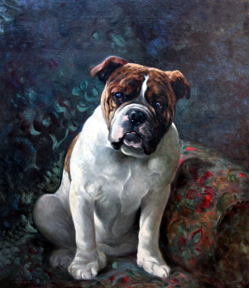 Click to see full size: Oil on canvas of a Bulldog by Lillian Cheviot (1894-1920).