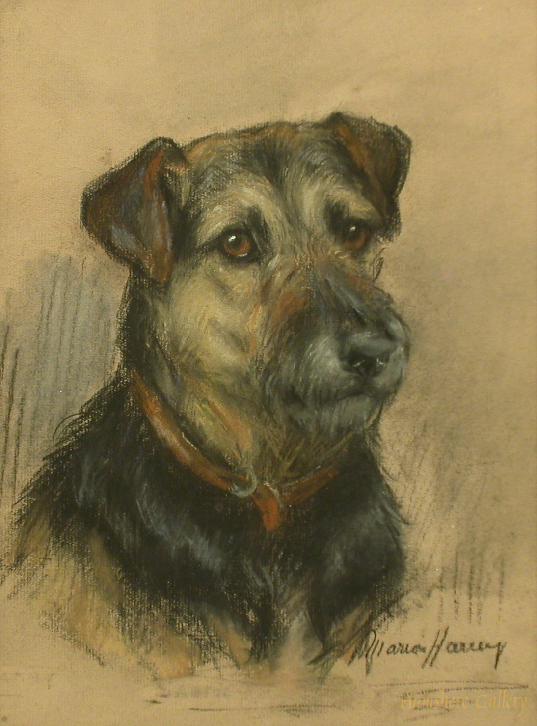 Click to see full size: Lakeland Terrier by Marion Rodger Harvey - Lakeland Terrier by Marion Rodger Harvey
