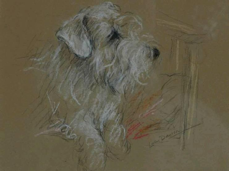 Click to see full size: Coloured chalks on buff paper of a head and shoulders study of a Sealyham Terrier seated on a chair by Lucy Dawson (1877 -1958).