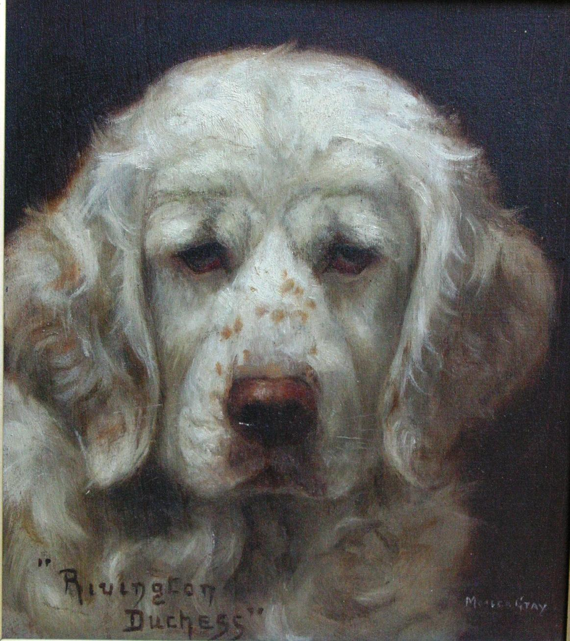 Click to see full size: Clumber Spaniel by Monica Gray (exh 1903-1919)- Clumber Spaniel by Monica Gray (exh 1903-1919)
