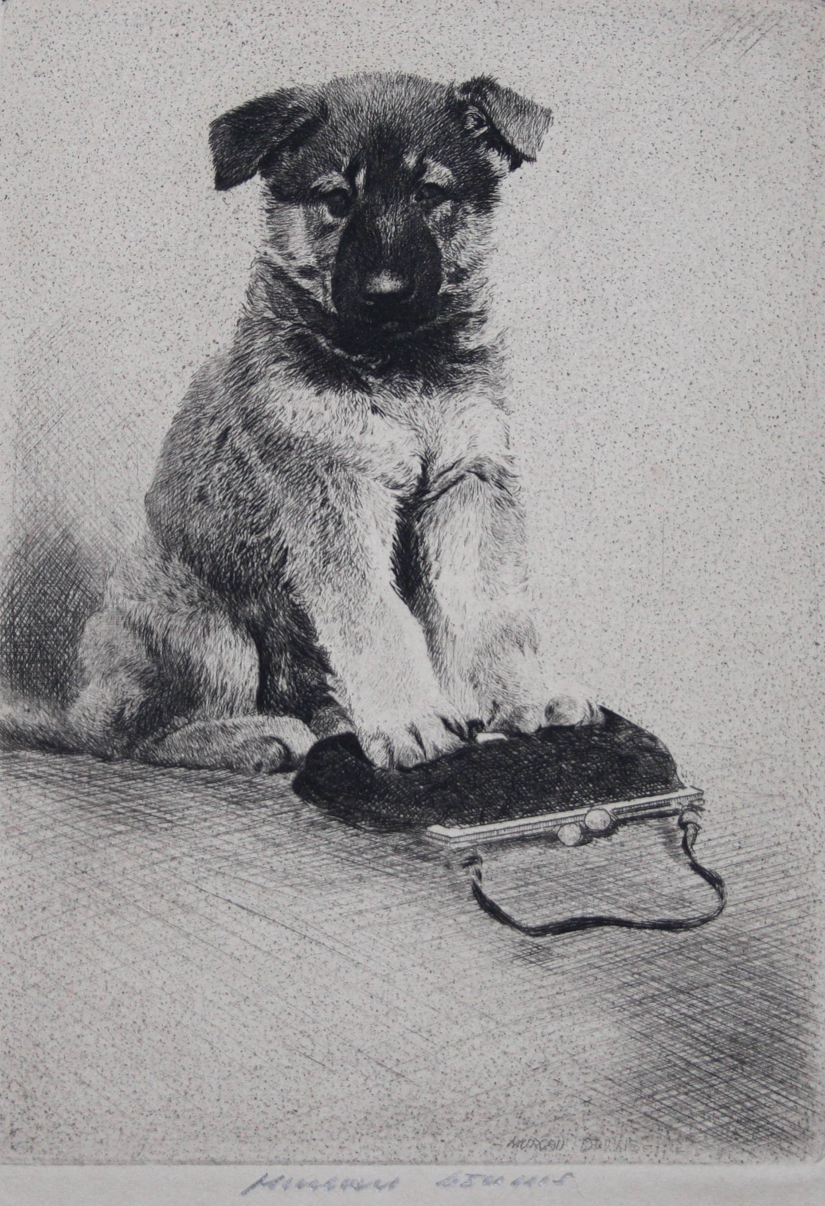 Click to see full size: German Shepherd by Morgan Dennis (American 1892-1960)- German Shepherd by Morgan Dennis (American 1892-1960)