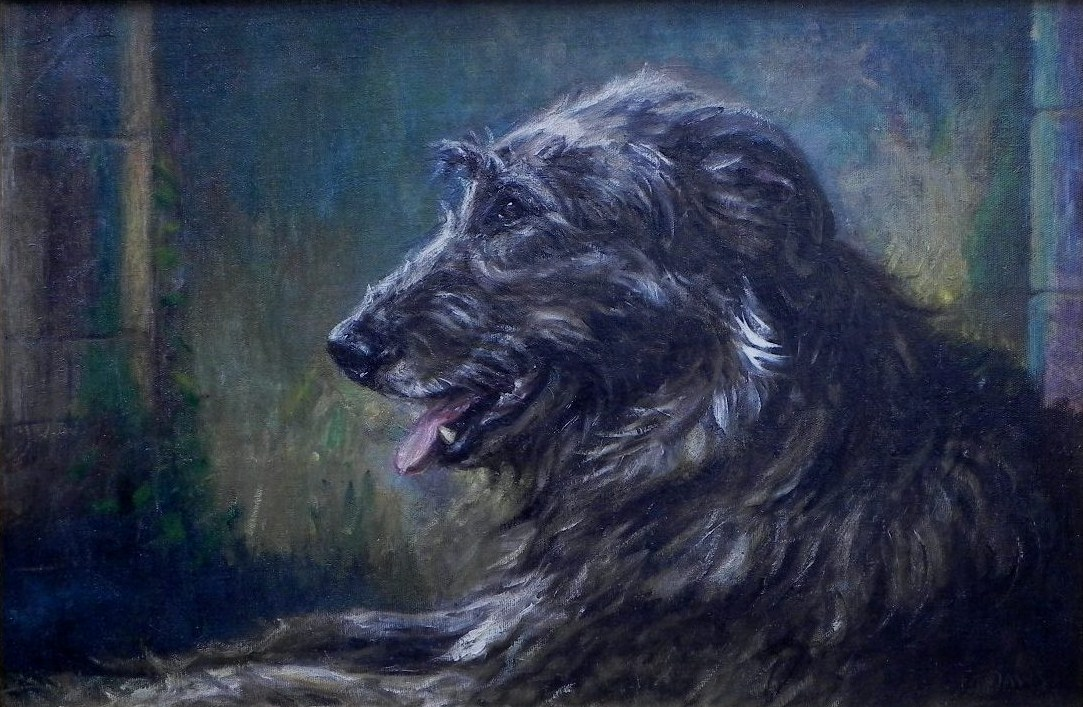 Click for larger image:   Irish Wolfhound by Thomas Frederick Daws RA - Irish Wolfhound by Thomas Frederick Daws RA