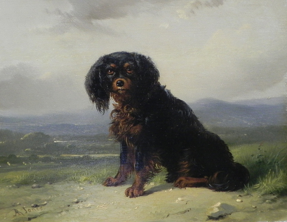 Click to see full size: An oil of a King Charles Cavalier Spaniel by Richard Jones 1767 ? 1840- An oil of a King Charles Cavalier Spaniel by Richard Jones 1767 ? 1840