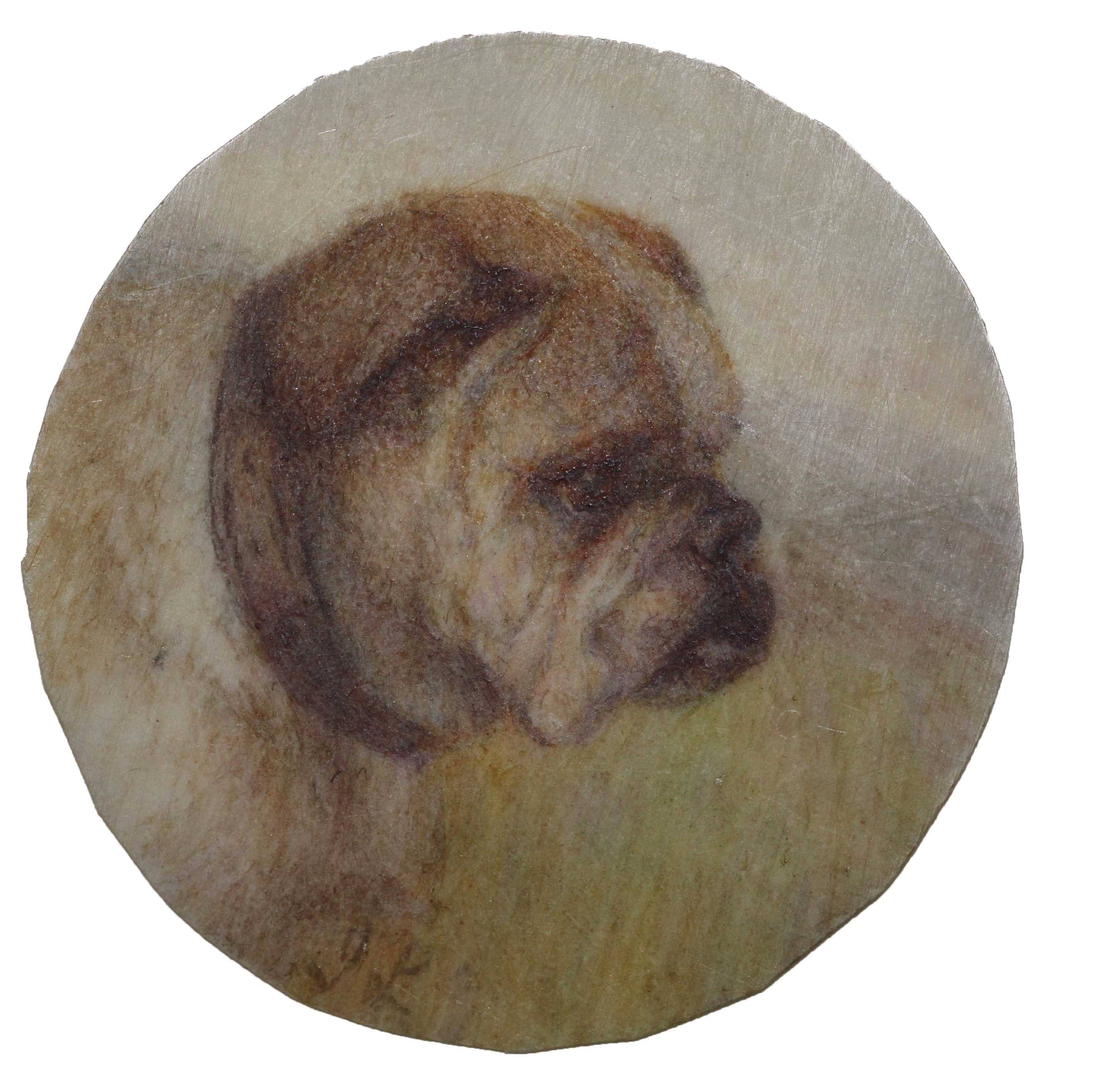 Click to see full size: Circular miniature on ivory of a Bulldog Miss Ida Frances Laidman_website only