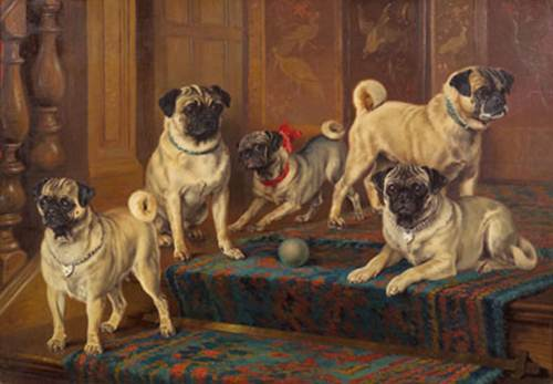Click to see full size: The Swarland Pugs by Wilson Hepple- The Swarland Pugs by Wilson Hepple