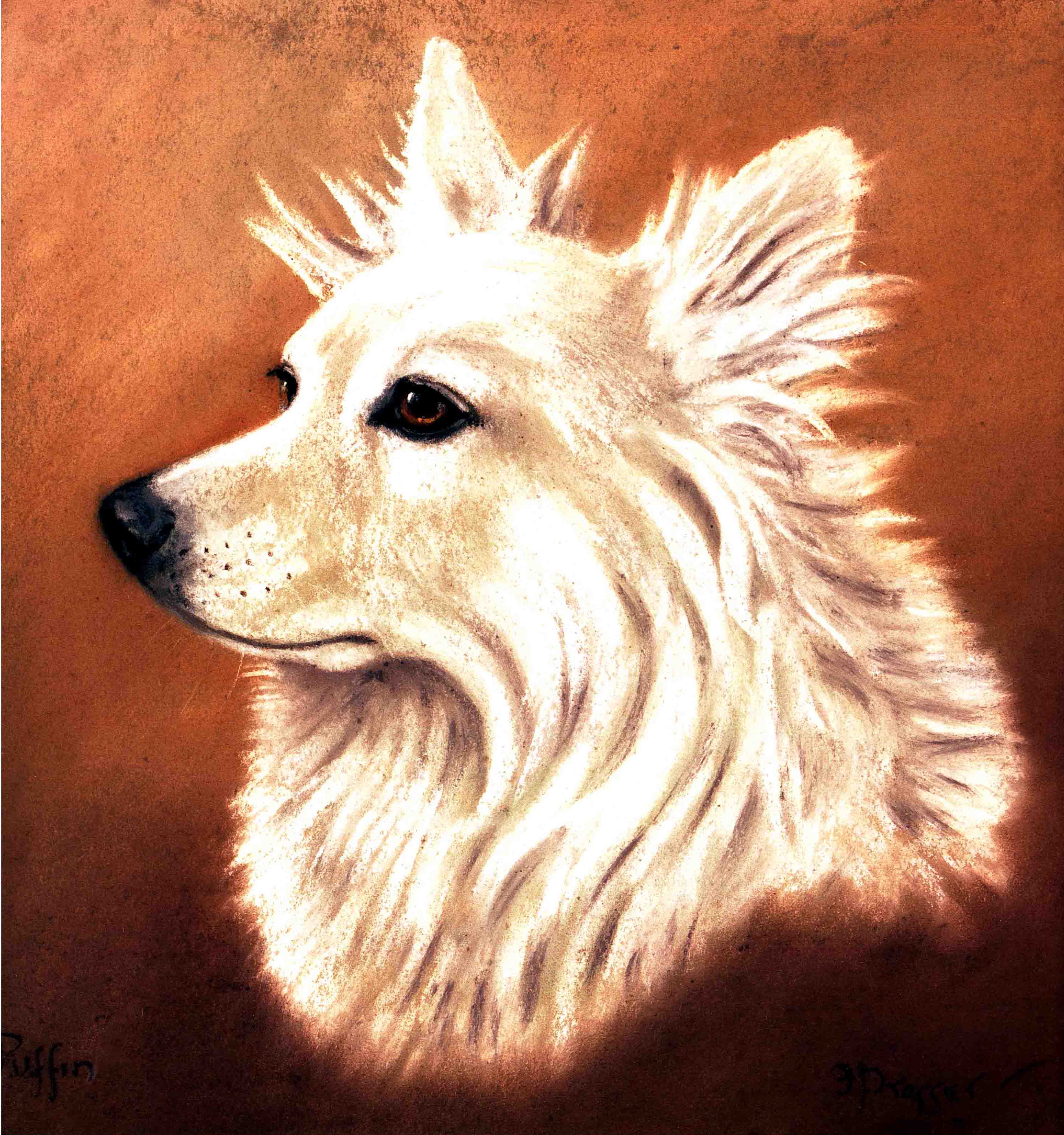 Click to see full size: Frank Prosser, English, ?Samoyed? pastel on paper, circa 1925.  Frank Prosser Pastel on paper. SOLD