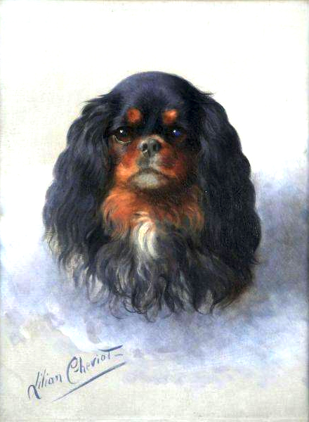 Click to see full size: Oil on canvas portrait of a King Charles Spaniel By Lillian Cheviot (fl. 1894-1930)