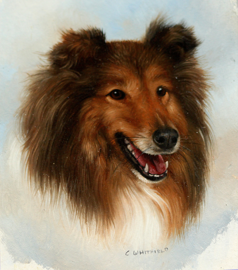 Click to see full size: Miniature on card of a Rough Collie by Carl Whitfield