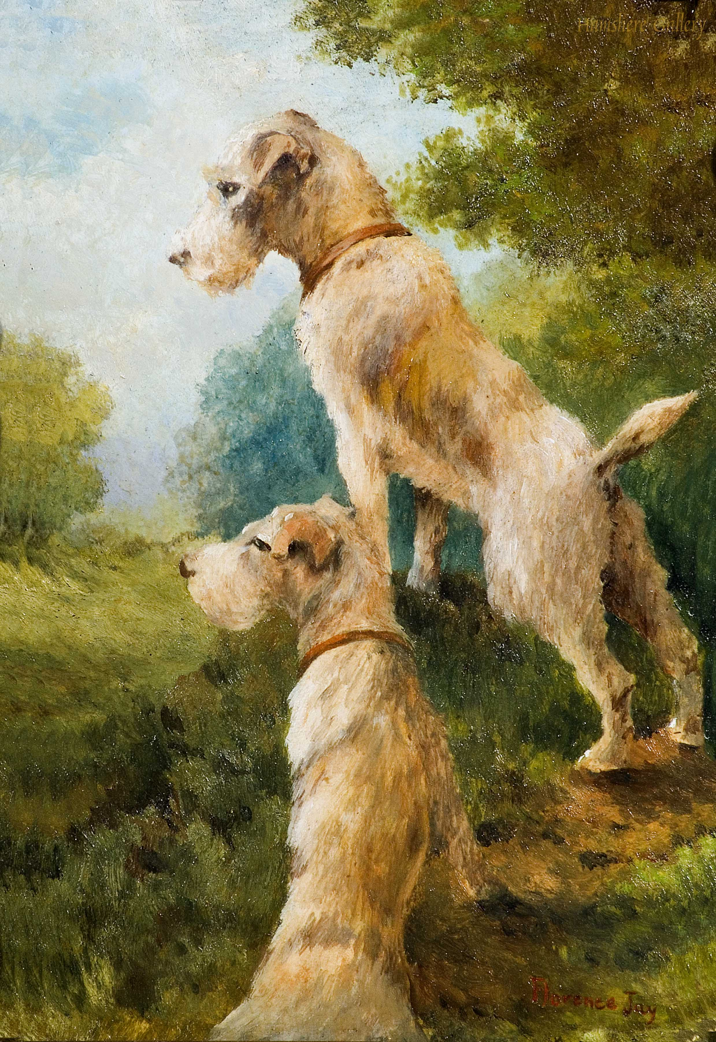 Click to see full size: Wire Hired Fox Terriers by Miss Florence Jay