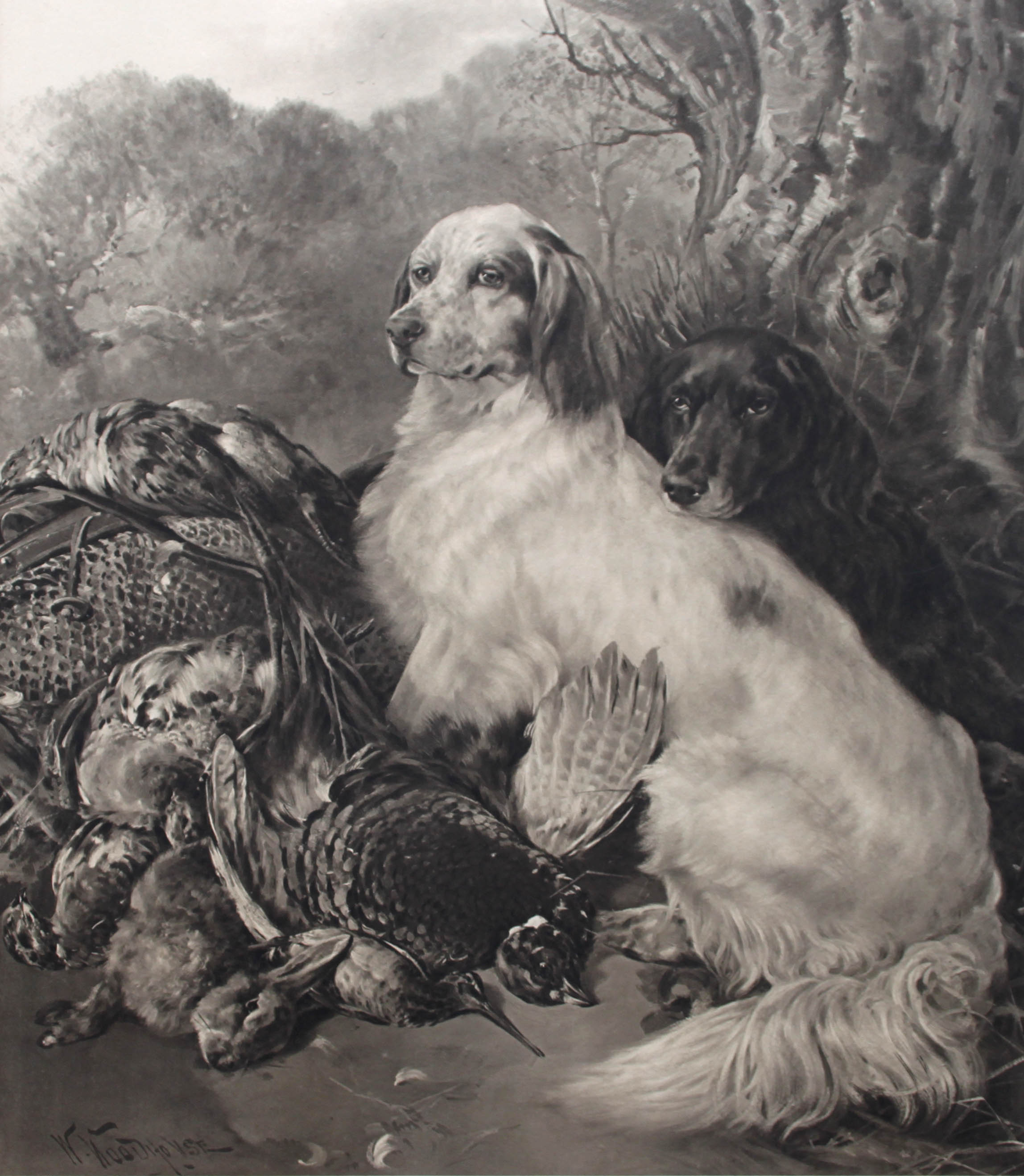 Click to see full size: Etching of English and Gordon Setter by Ronald Basil Emsley