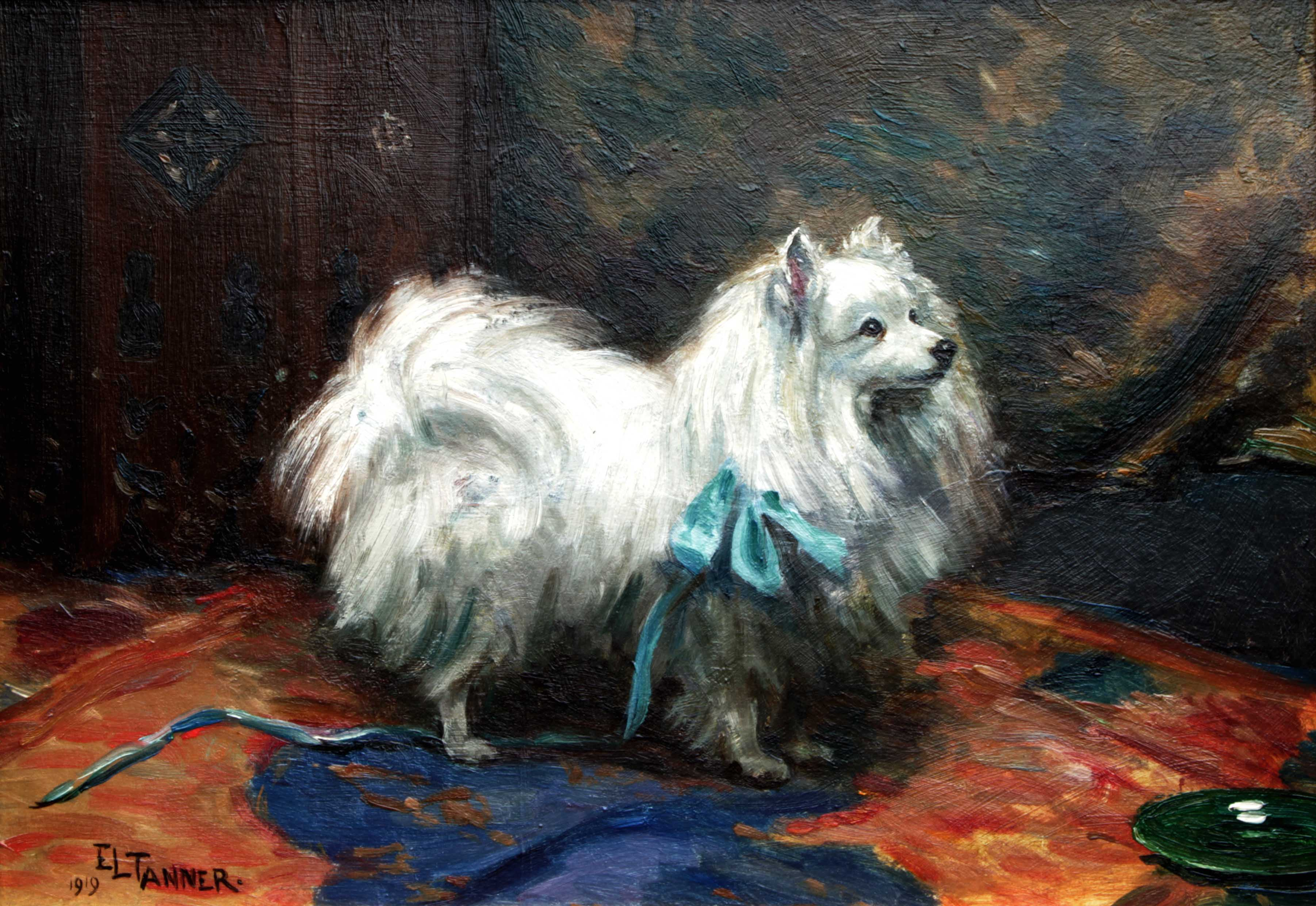 Click to see full size: Pomeranian by Ethel Lavinia