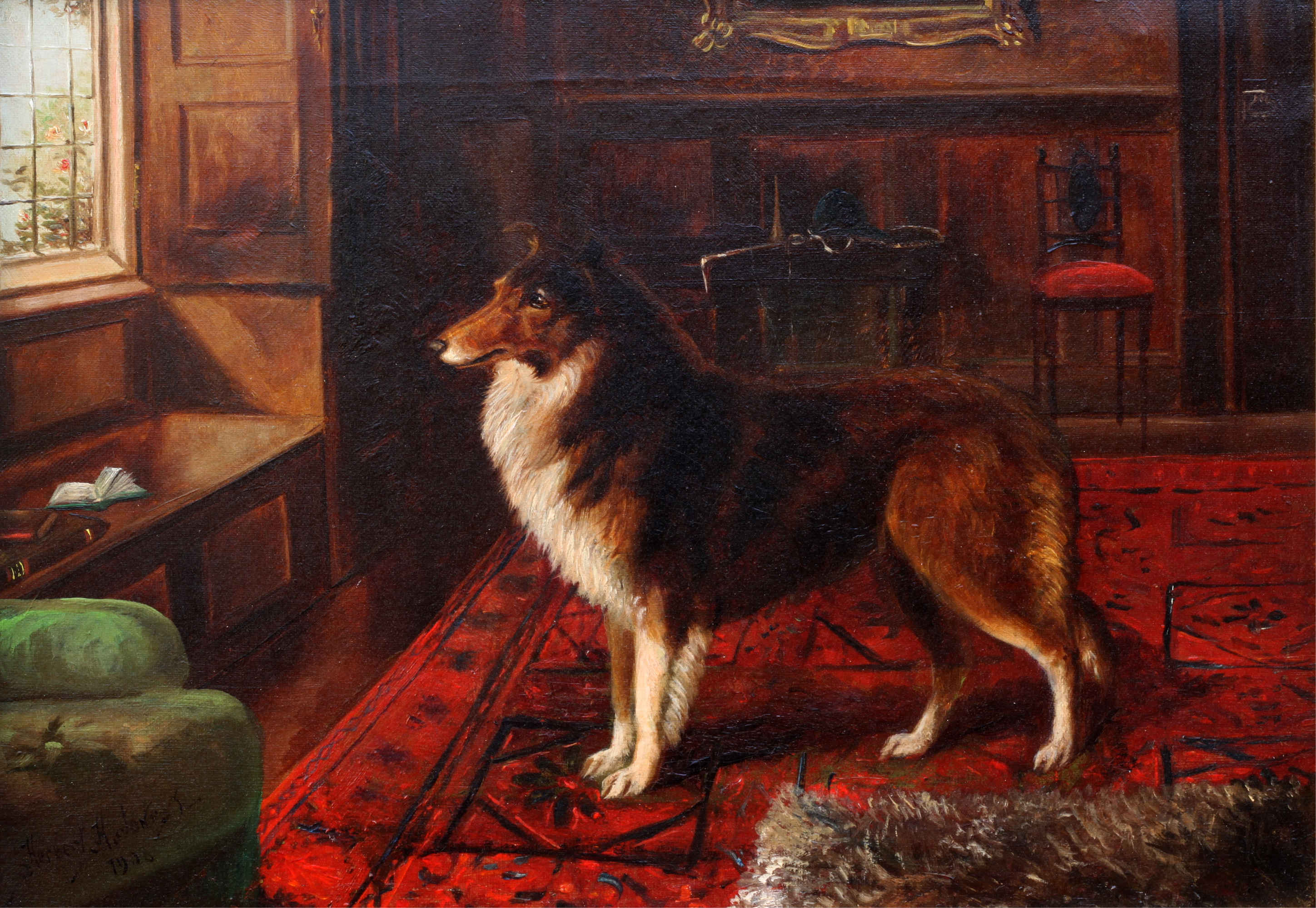 Click to see full size: Rough Collie