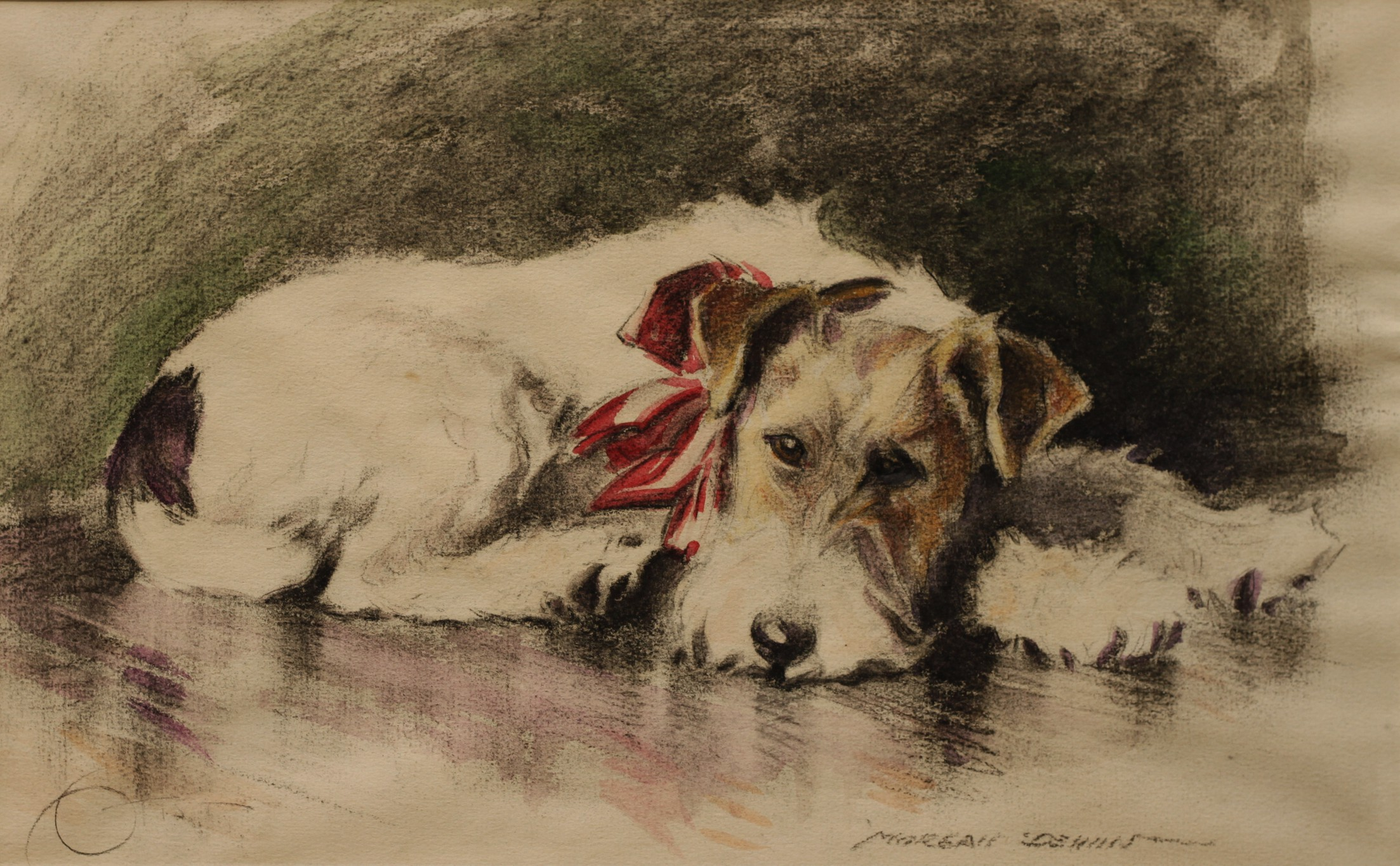 Click to see full size: Pencil and watercolour drawing of a Wire-haired Fox Terrier by Morgan Dennis
