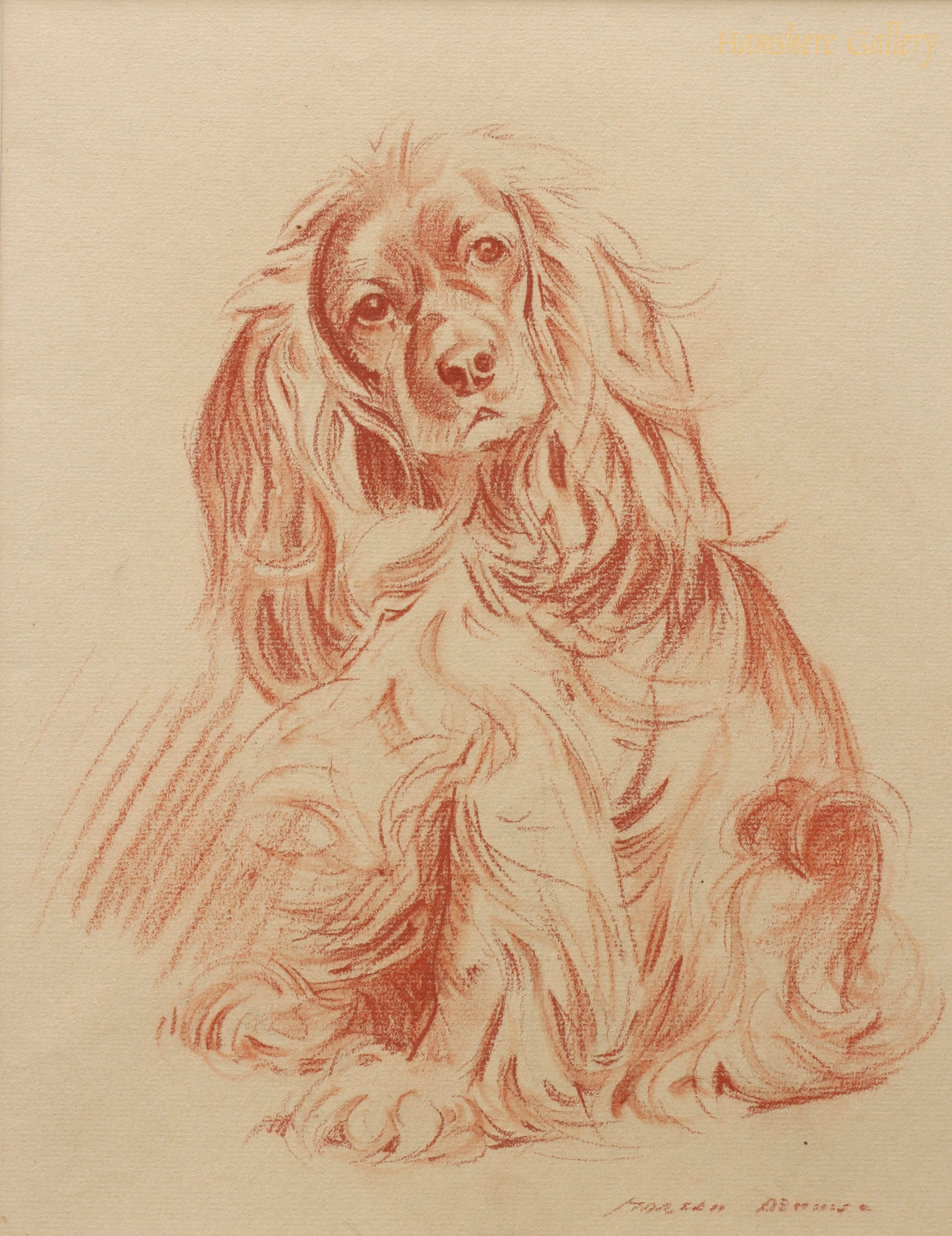 Click to see full size: Cocker Spaniel by Morgan Dennis