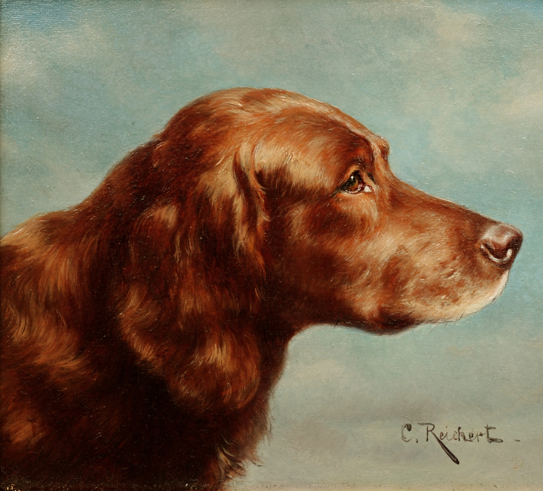 Click to see full size: Oil on panel of an Irish Setter by Carl Reichert