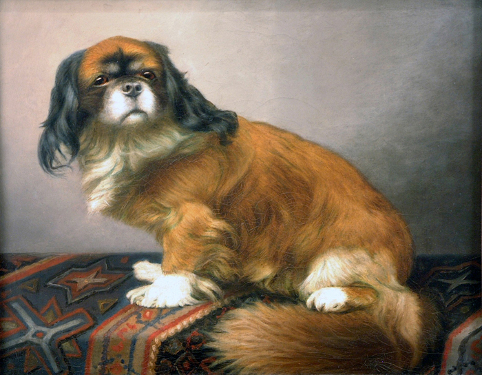 Click to see full size: - Vincent de Vos, Belgium, manner of, ?Pekingese?, oil on canvas.