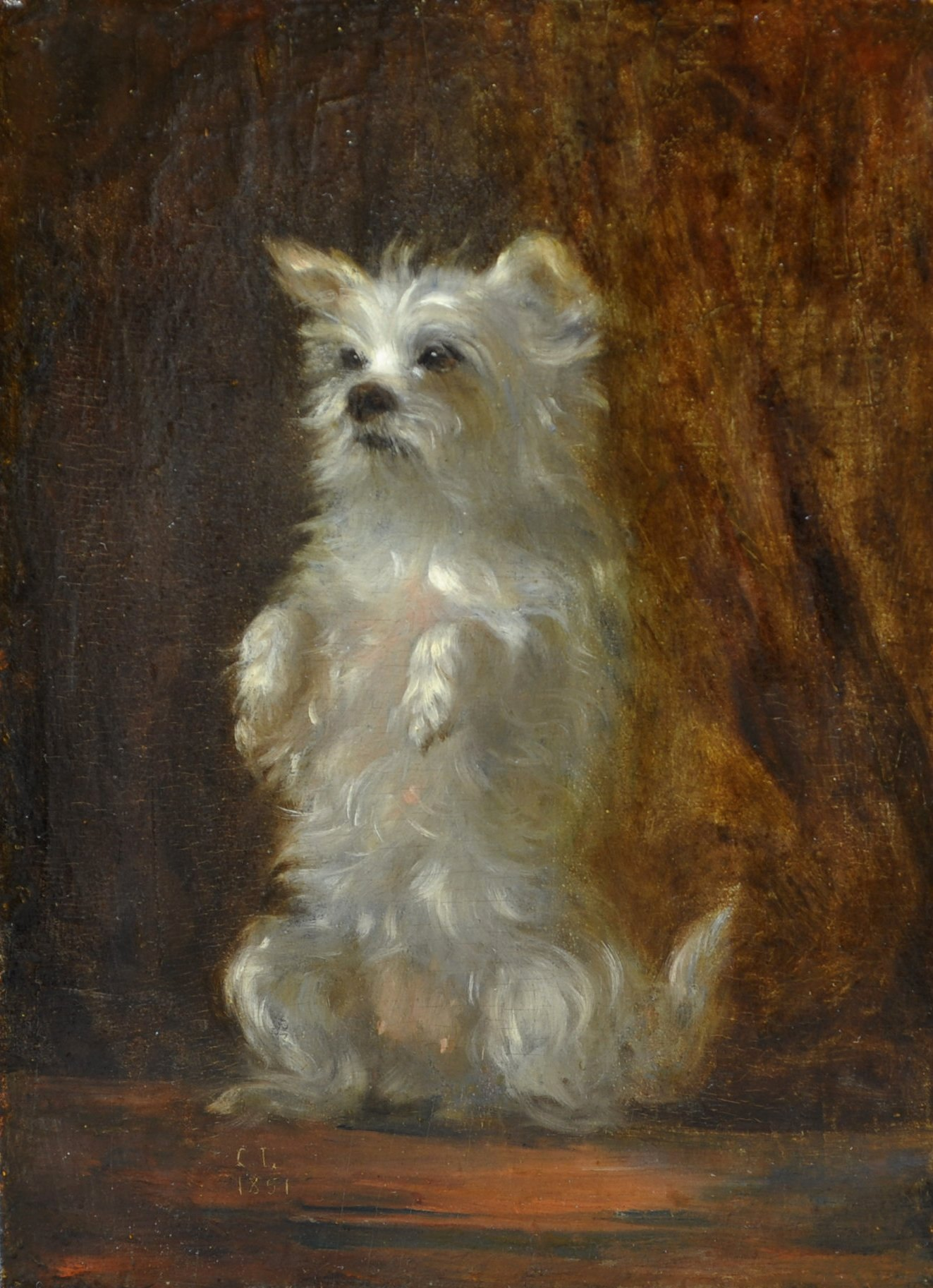 Click to see full size: Oil of a Terrier of the West Highland type.   Initialled and dated ?C.L. 1851?  French, 1851