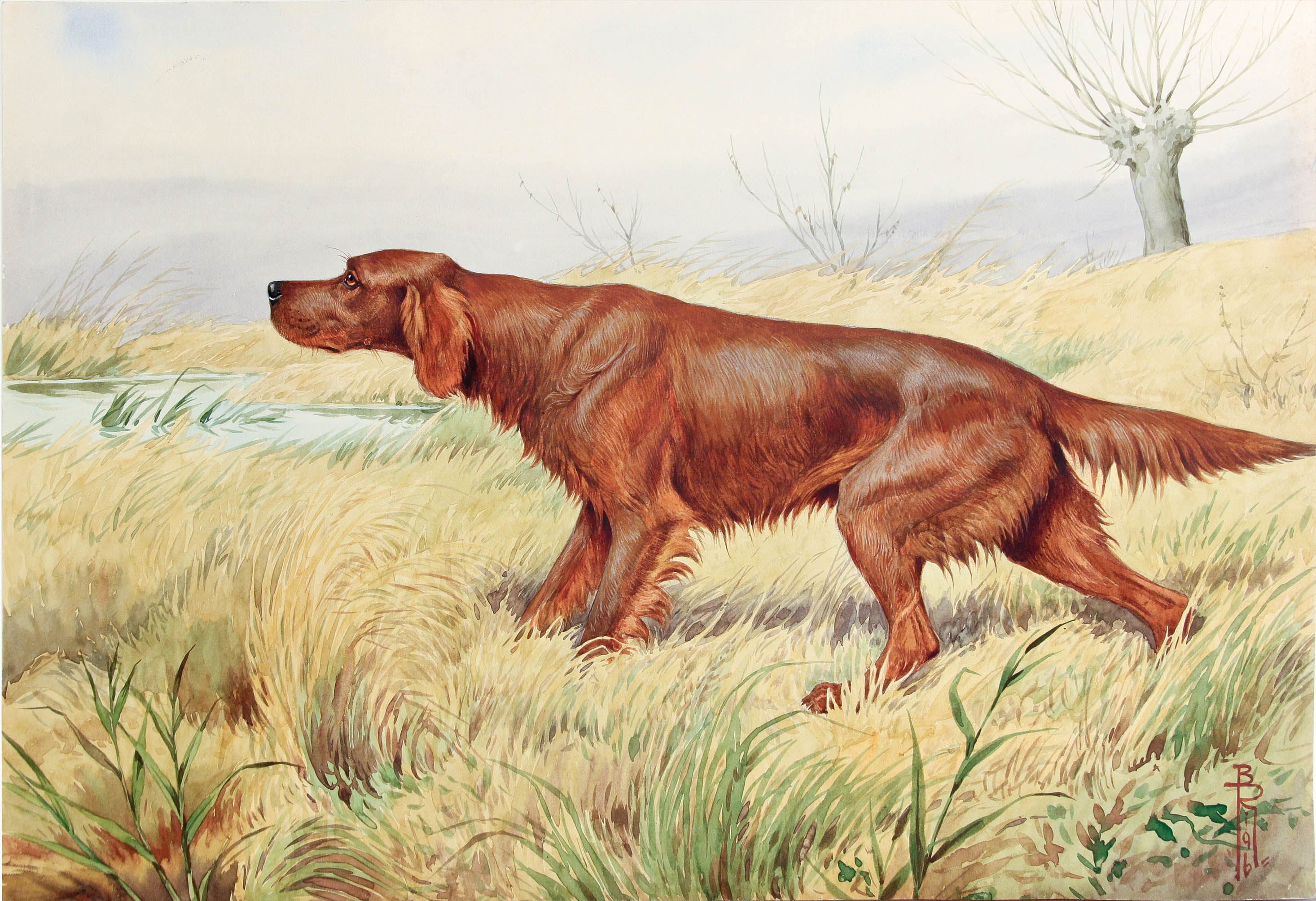Click to see full size: Watercolour of an Irish Setter in marsh reeded lake side setting by Boris Stefanovitch Riabouchinsky