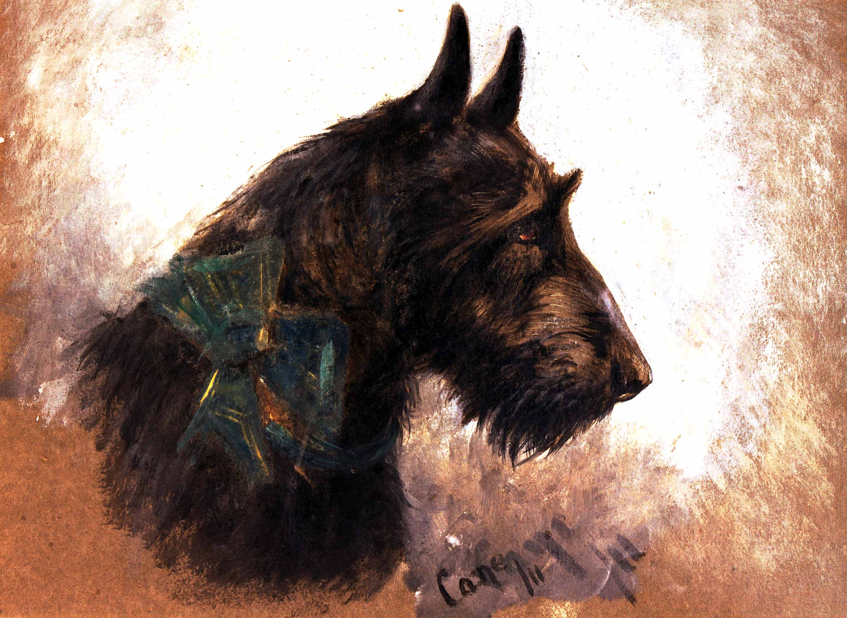 Click to see full size: Scottish Terrier by Herbert Collins Cane (fl 1883 ? 1891)- Scottish Terrier by Herbert Collins Cane (fl 1883 ? 1891)