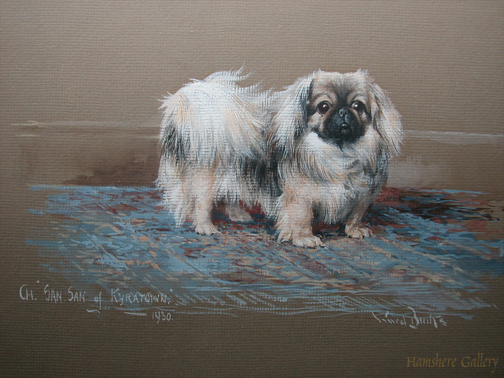 Click to see full size: Gouache of a Pekingese by Ruben Ward Binks