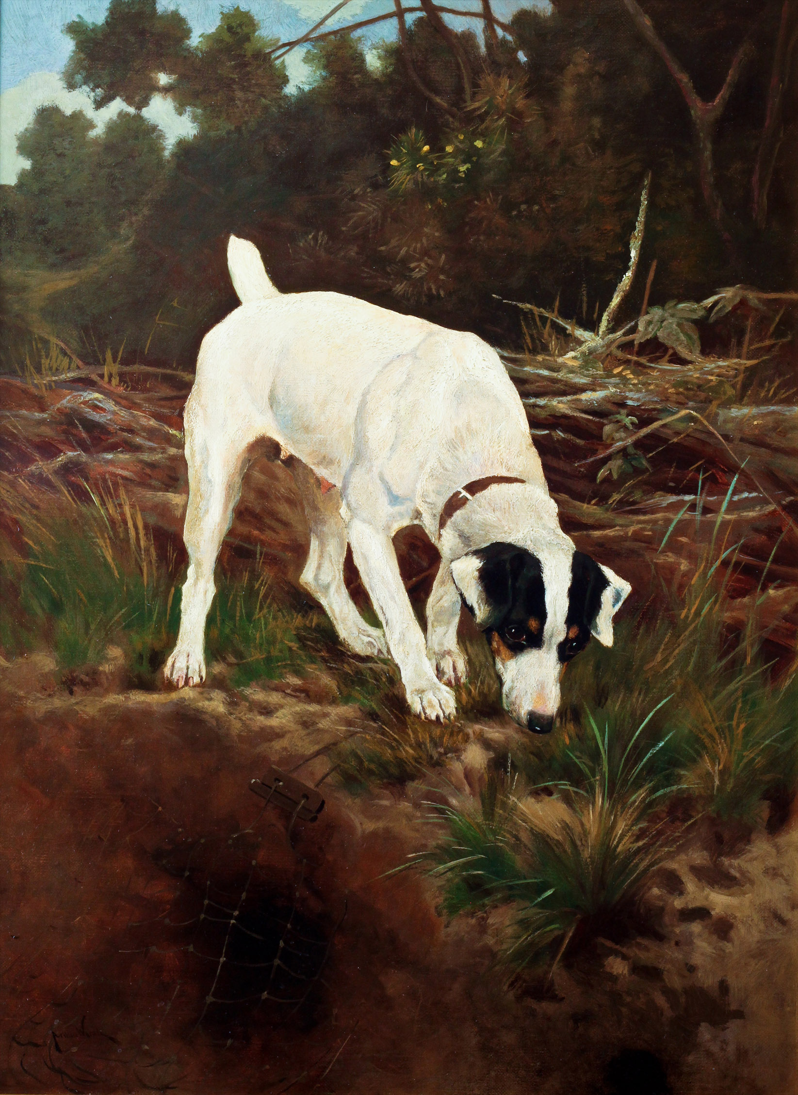 Click to see full size: Oil on canvas of a Smooth-haired Fox Terrier by Arthur Wardle