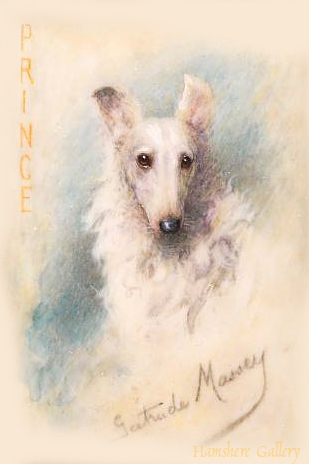 Click to see full size: Borzoi