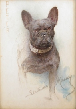 Click to see full size: French Bulldog