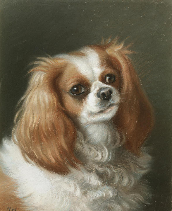 Click to see full size: A pastel of a King Charles Cavalier by Miss Nellie Hadden RMS, FZS, (fl.1885-circa d. 1917)SOLD