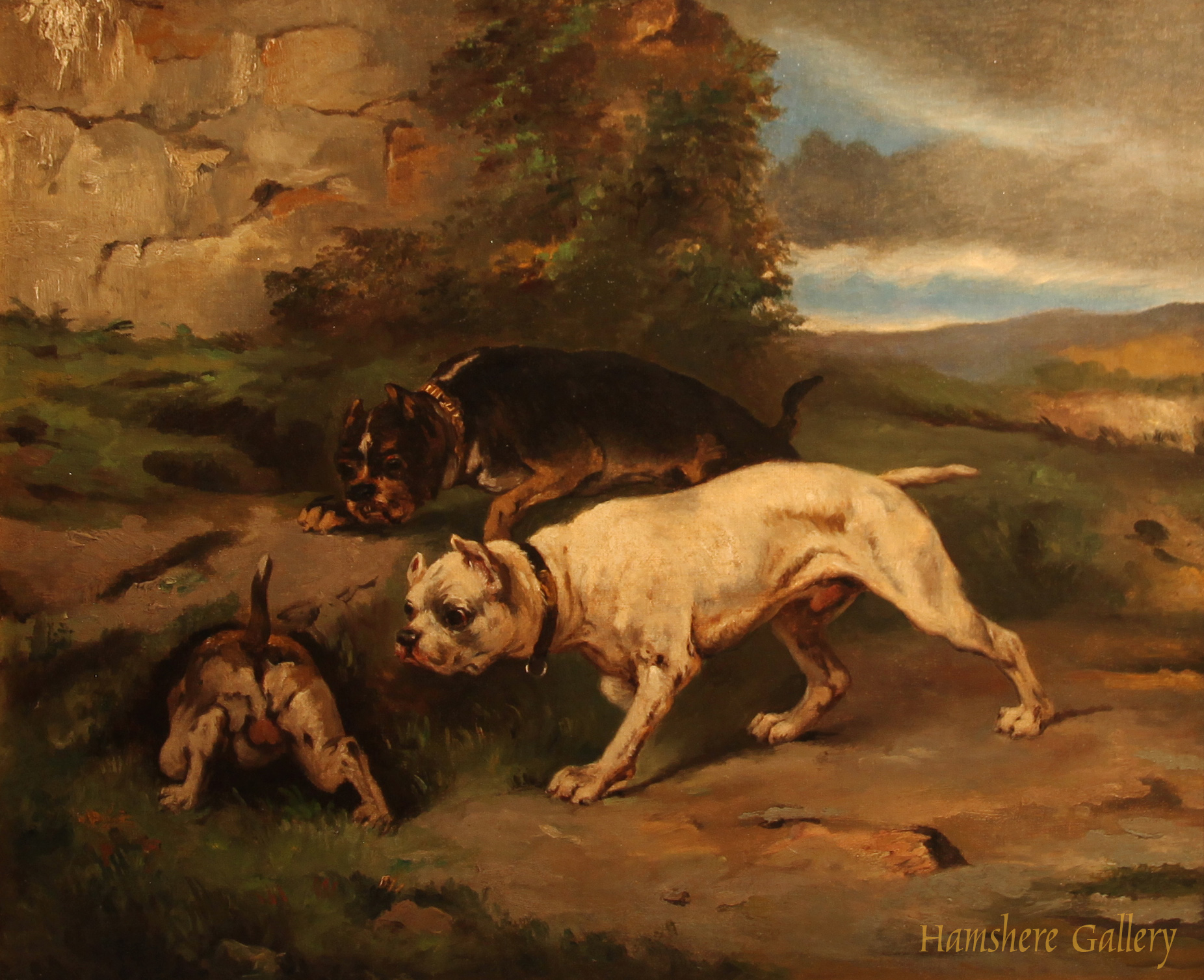 Click to see full size: Three Bull Terriers- Three Bull Terriers