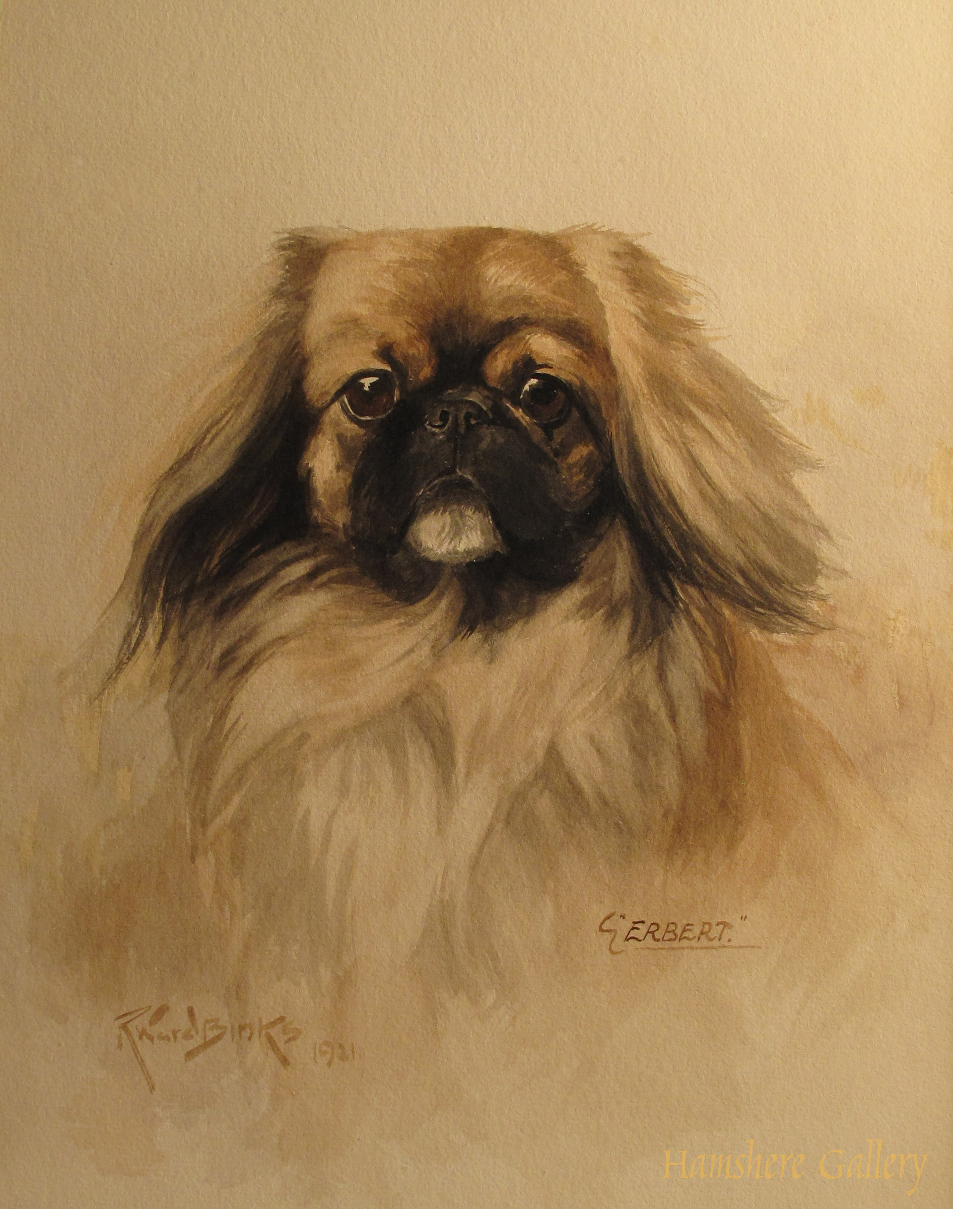 Click to see full size: The Pekingese �Erbert� by Reuben Ward Binks