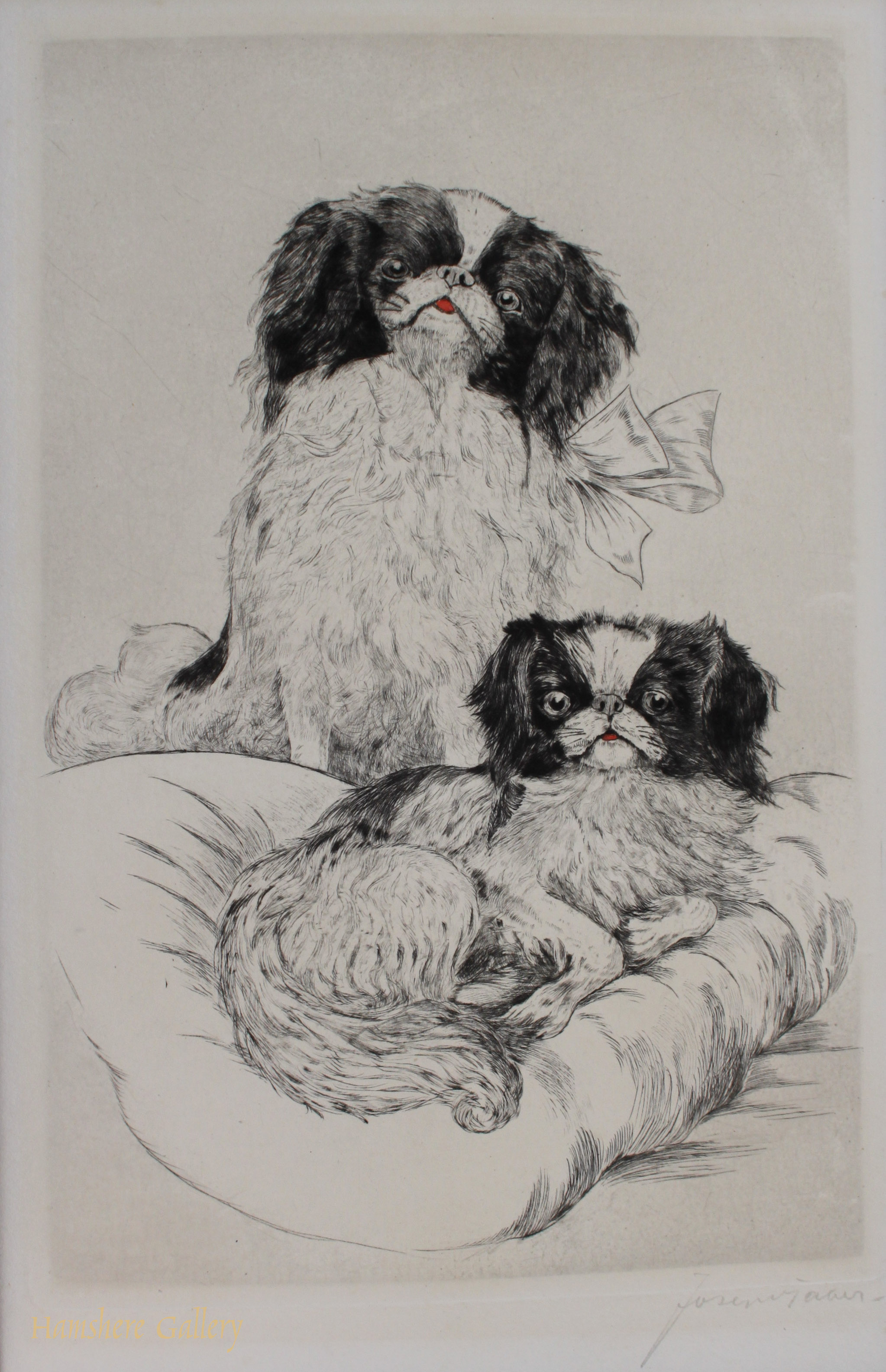 Click to see full size: Japanese Chin by Carl Albert Joseph Garber