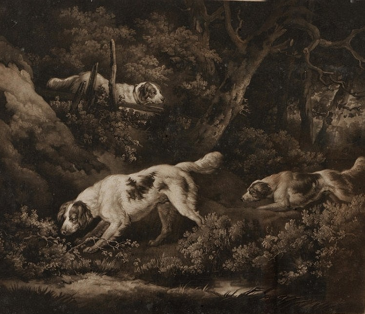 Click to see full size: Setters in a forest setting engraved by William Ward
