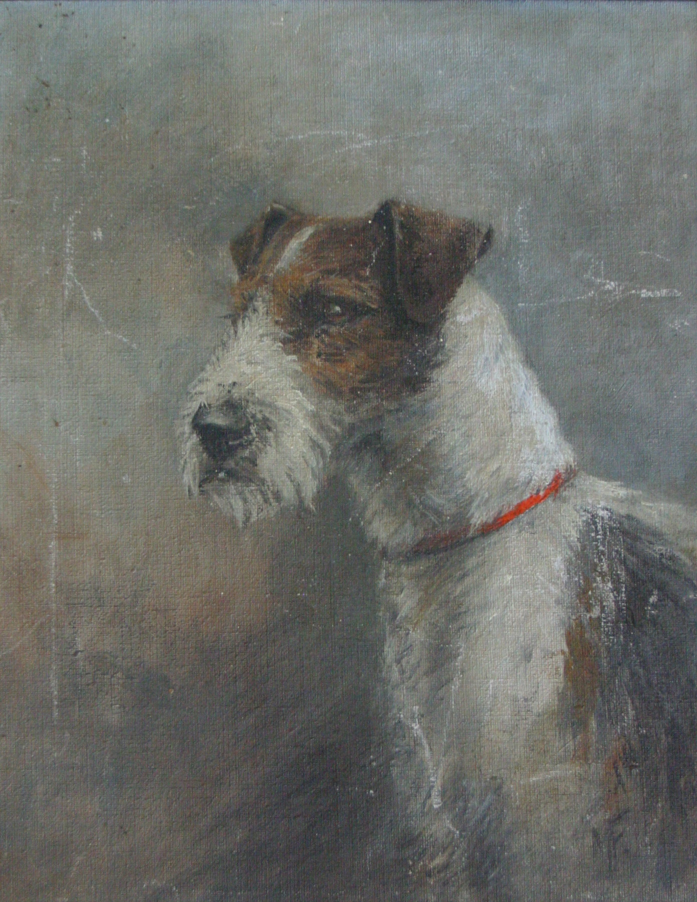 Click to see full size: Wire-haired Fox Terrier by Mrs Minnie Fox