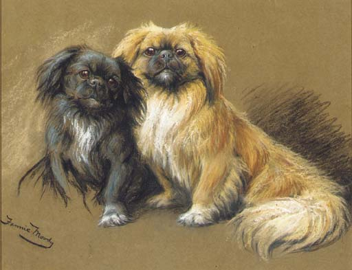 Click to see full size: Tibetan Spaniels by Miss Fannie Moody