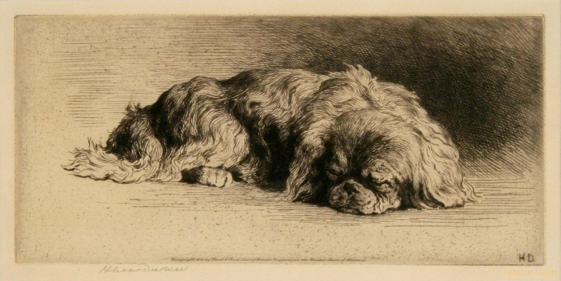 Click to see full size: A Sleeping Pekingese by Herbert Thomas Dicksee