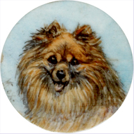Click to see full size: A Miniature on ivory of a Pomeranian (Zwerg-Spitz) by Mrs Minnie Fox (English 1875-1976)
