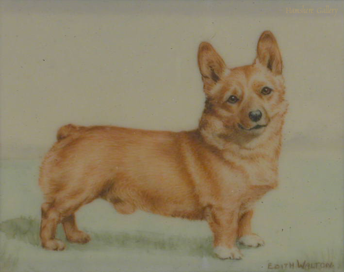 Click to see full size: Corgi by Edith Walton